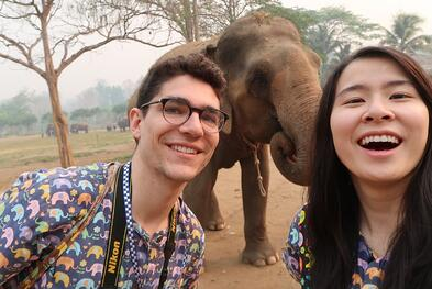 Elephants_V3